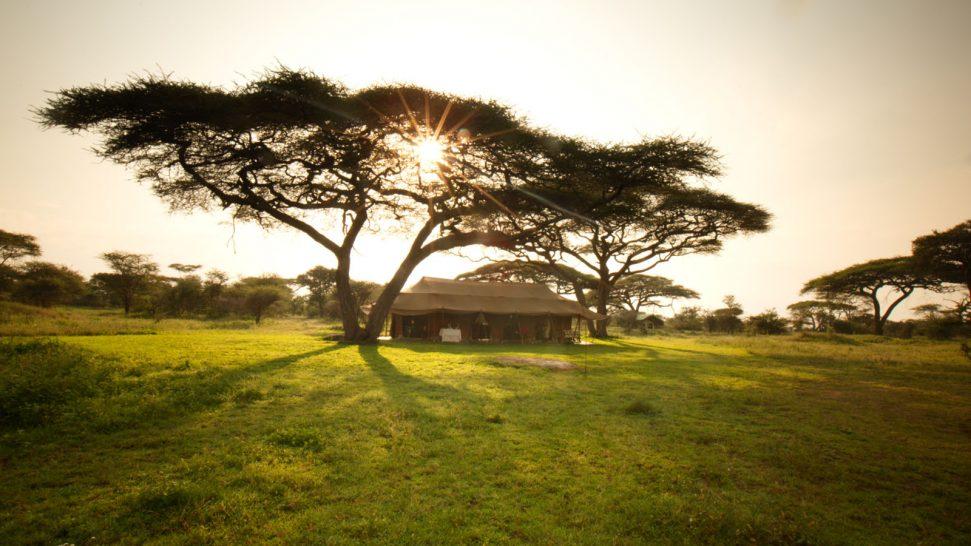 Alex Walker's Serian's Serengeti South Mobile Camp