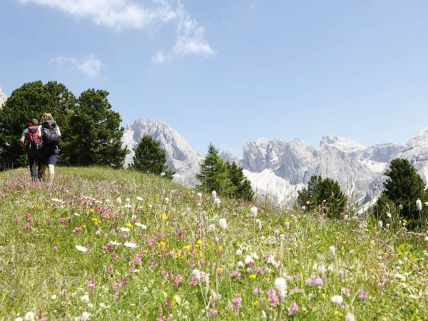 Alpenroyal Grand Hotel Hiking