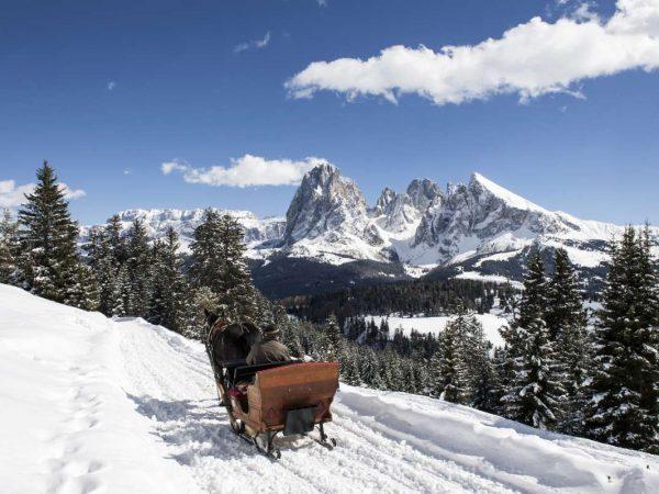 Alpenroyal Grand Hotel Horse Drawn Sleigh Ride