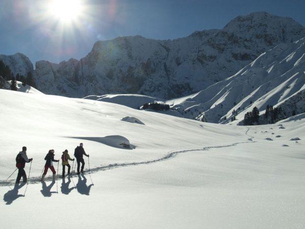 Alpina Dolomites Skiing