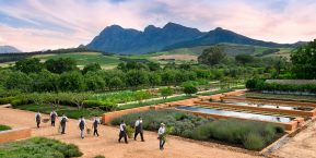 Babylonstoren, Cape Winelands