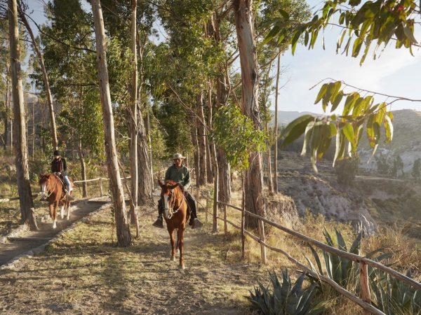 Belmond Las Casitas Peruvian Paso Horse Riding