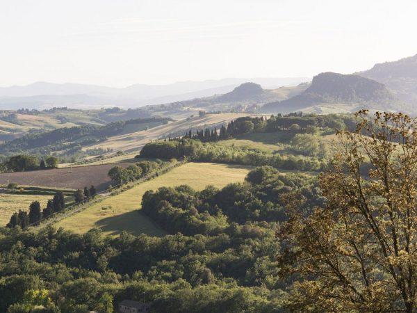 Borgo Pignano Guided tours