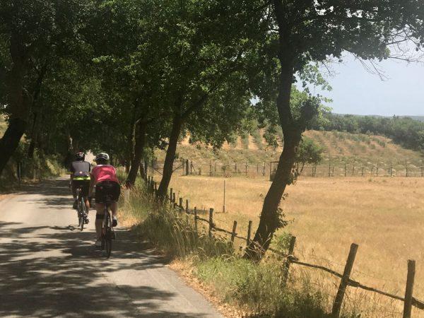 Borgo Pignano Trekking and Biking