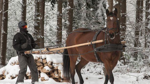 Cheval Blanc Courchevel Adventures & Mountain Living