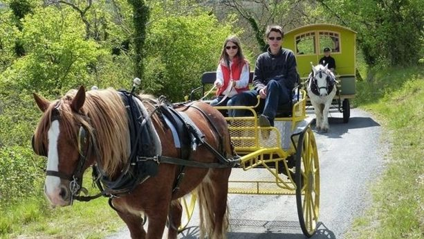 Chteau des Vigiers Carriage ride