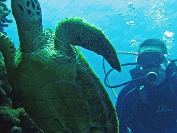 Constance Ephelia Mahe Seychelles Diving