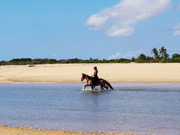 Diamonds Mequfi Beach Resort Horse Experience