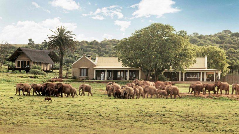 Gorah elephant camp south africa