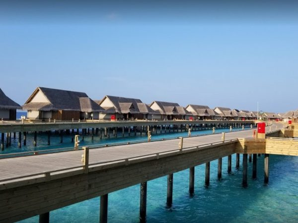 Joali Maldives Lobby