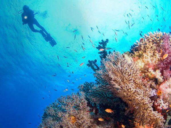 Joali Maldives Watersports