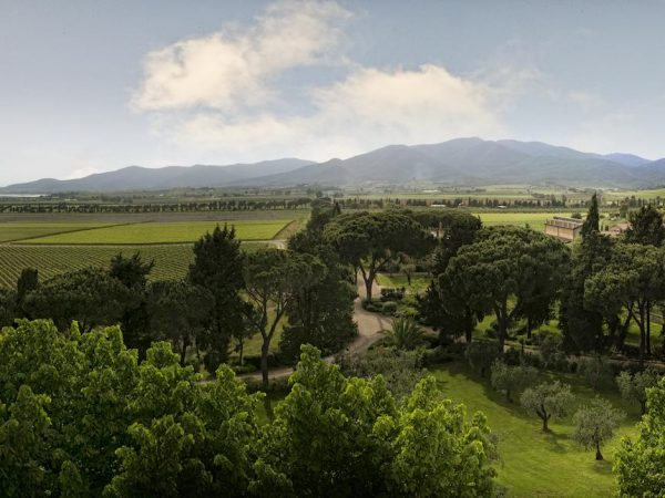L'Andana View