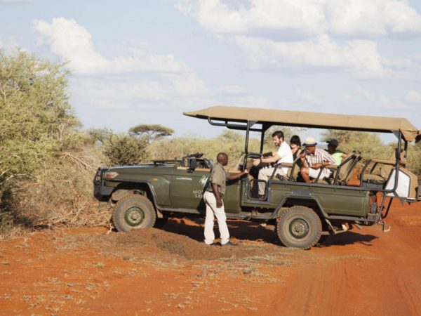 Molori Safari Lodge Game Drive