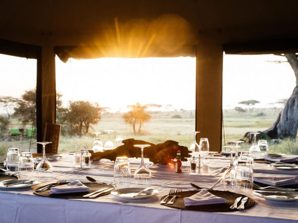 Namiri Plains Camp Bar