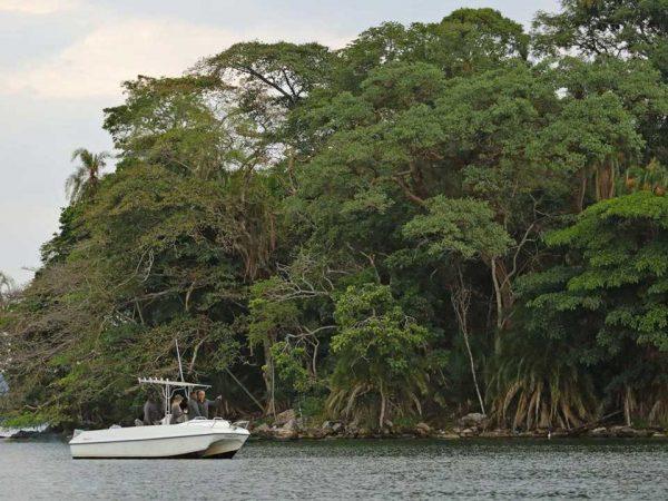 Rubondo Island Boating Safari