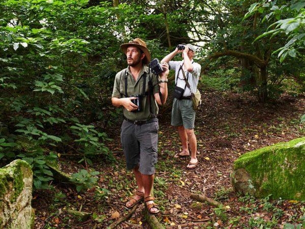 Rubondo Island Forest Hiking