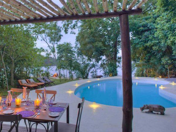 Rubondo Island Pool