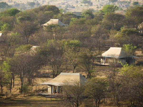 Sayari Camp View