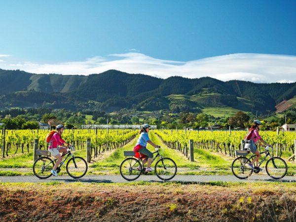 Split Apple Retreat Cycling Tours