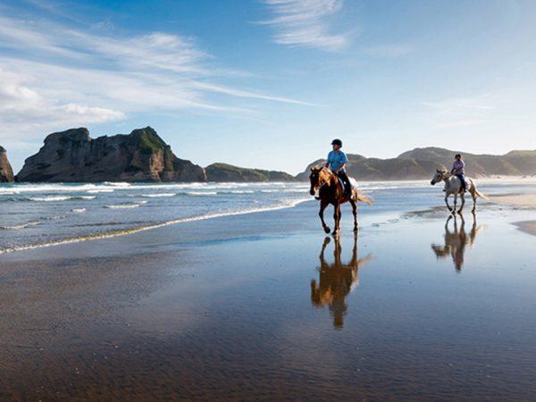 Split Apple Retreat Horseback Riding