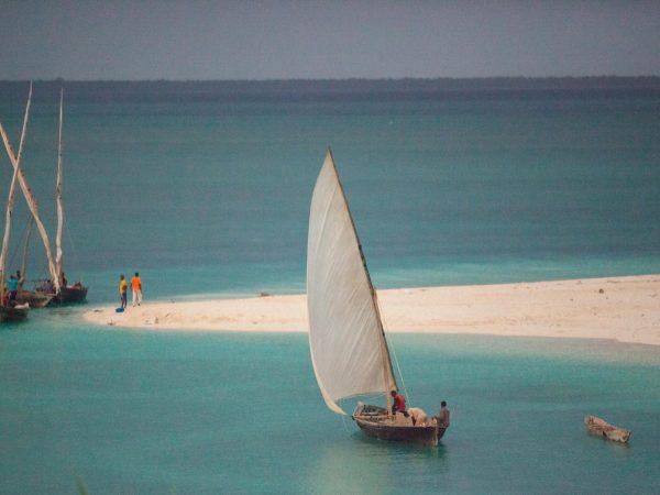 Zanzibar encounters