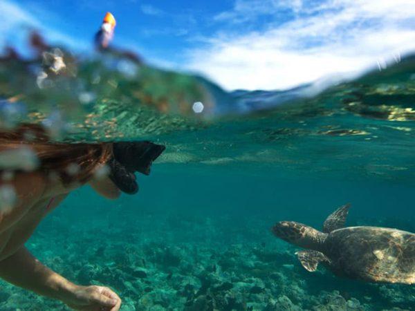 Anantara Kihavah Maldives Villas Turtle Quest