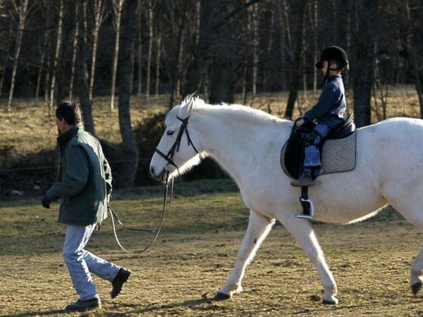 Anantara Vilamoura Algarve Resort Horse Riding