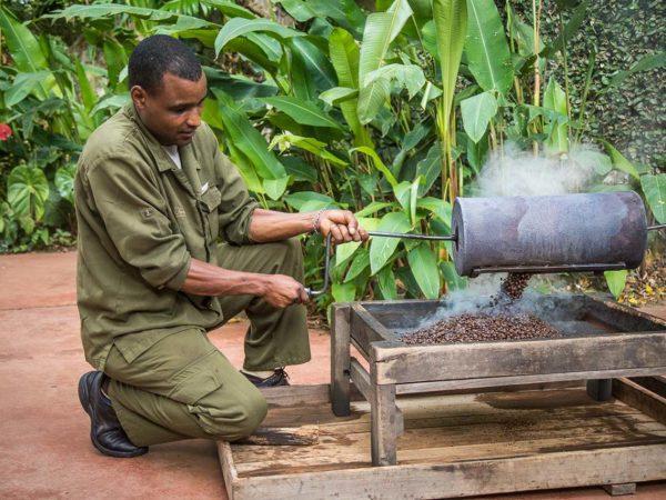 Gibbs Farm Coffee Roasting