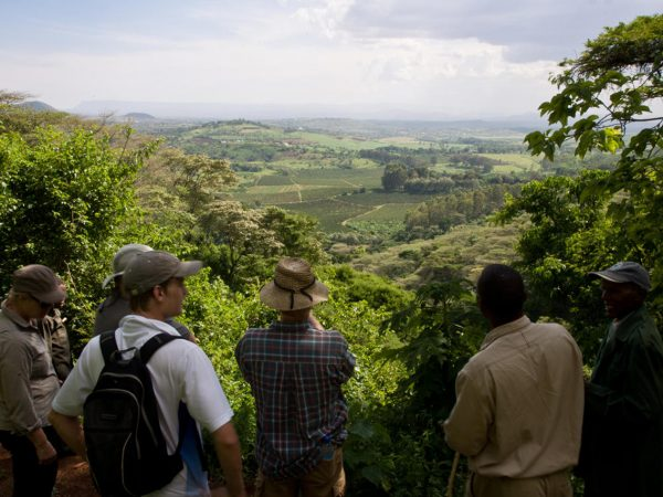 Gibbs Farm Farm to Ngorongoro Crater Rim Hike