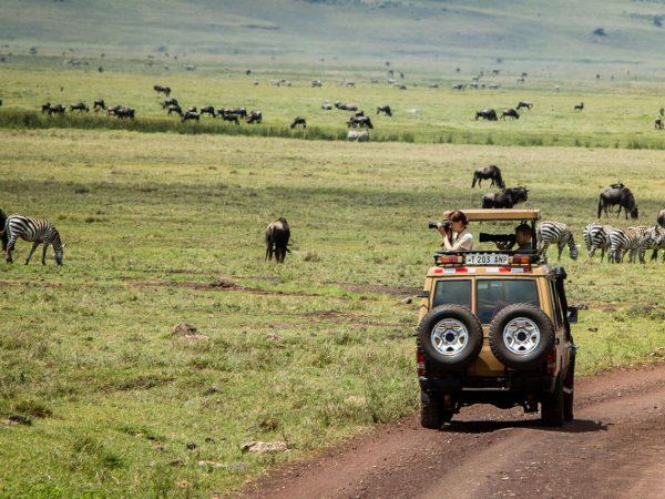 Gibbs Farm Lake Manyara Safari