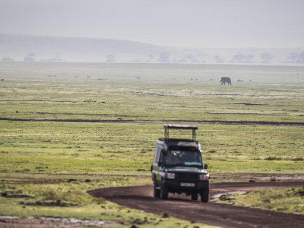 Gibbs Farm Safari Ngorongoro Crater