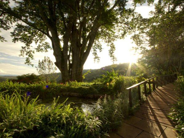 Gibbs Farm Sunset View