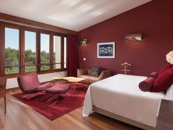 Marques de Riscal, a Luxury Collection Elciego Deluxe Spa Guest room, 1 King, Vineyards view, Mountain view, Spa Building