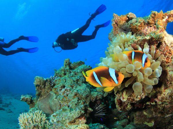 Naladhu Private Island Maldives Scuba Diving