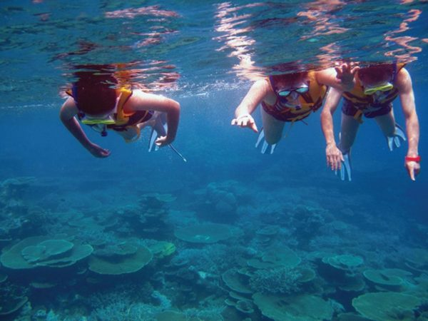 Niyama Private Islands Maldives Private Snorkelling Tours
