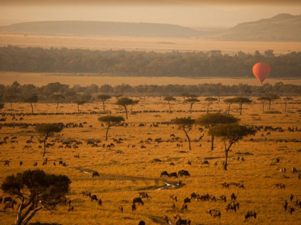 Sanctuary Olonana Hot Air Balloon Safari