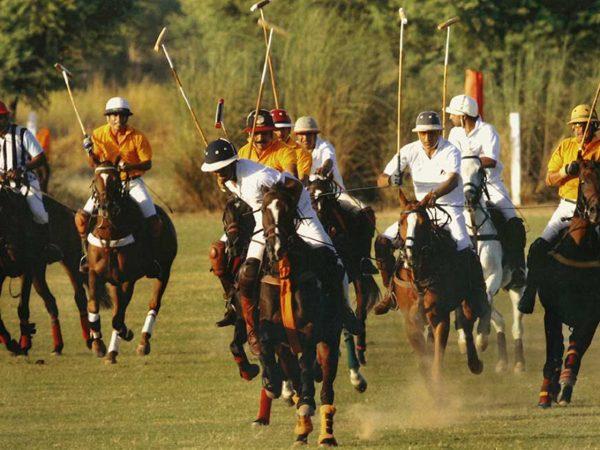 Sujan Rajmahal Palace The Royal Box Polo Match Experience