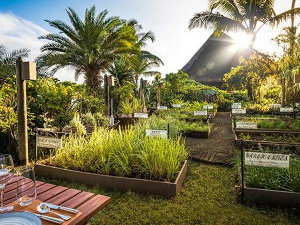 The Oberoi Beach Resort, Mauritius The Herb Trail