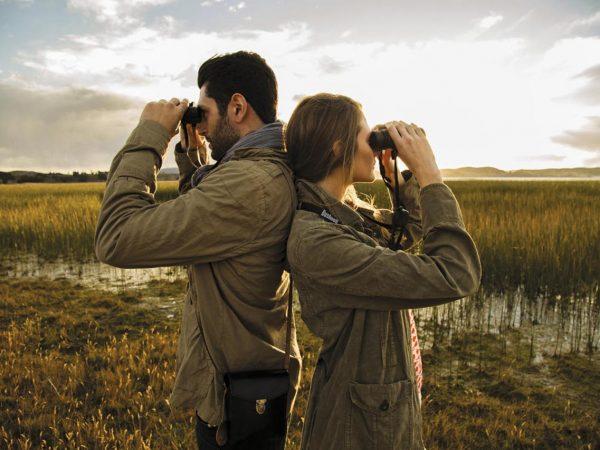 Titilaka Titicaca Lake Birdwatching