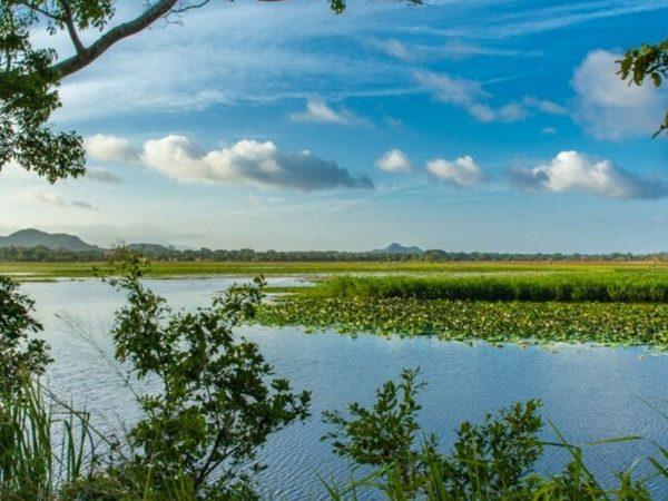 Ulagalla Resort by Uga Escapes Jungle Kayaking
