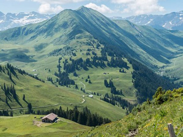Alpina Gstaad Hiking