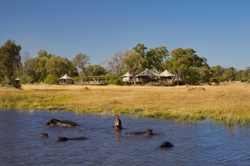 Tuludi Camp Khwai Private Reserve Hippos in Lagoon