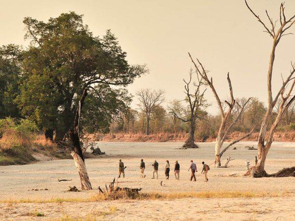 Time and Tide Chinzombo Walking safaris