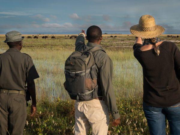Time and Tide Lewanika Walking safaris