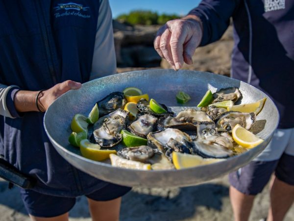 True North Adventure Cruises Oysters