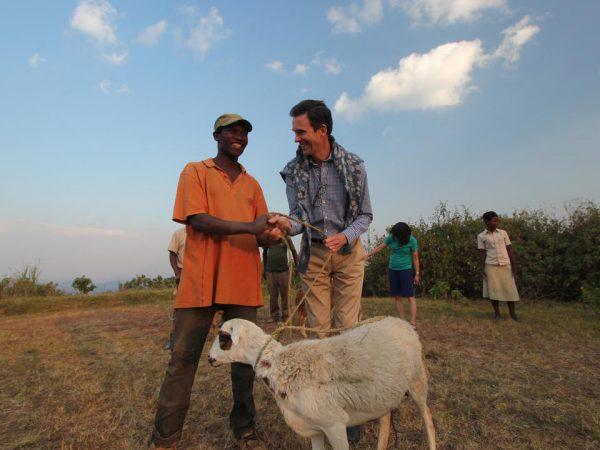 Virunga Lodge Virunga One Sheep per Family Community Project