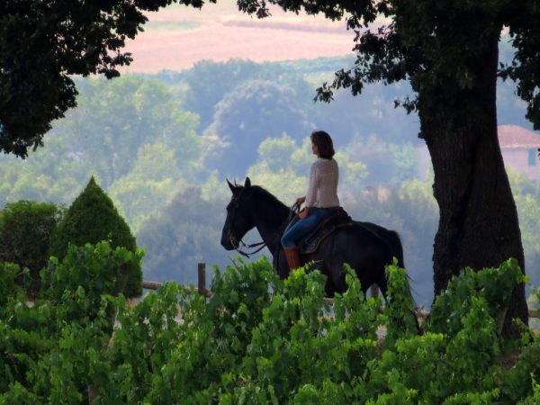 Castello Banfi Il Borgo Horse Riding