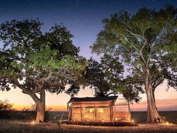 African Bush Camps Linyanti Expeditions Night View