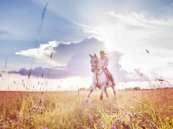 Anantara Angkor Resort Horse Riding