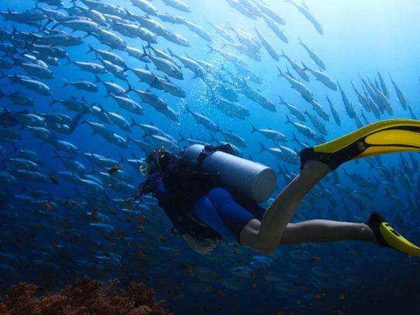 Anantara Seminyak Bali Resort Scuba Diving
